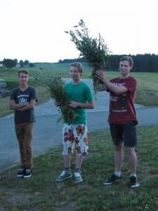 Frederik, Leon und Joschua (aus Sümmern) am Abend nach ihren ersten Alleinflügen. Die Disteln geben das nötige Gefühl für den Steuerknüppel